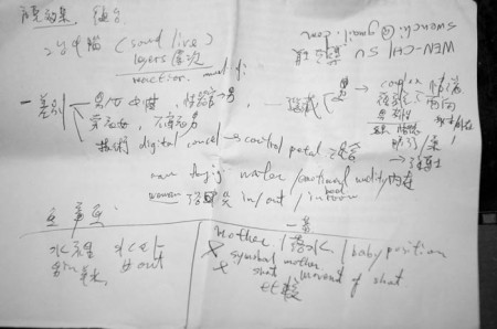 Notes from Wen-Chi when she translate in the talk after the perfo