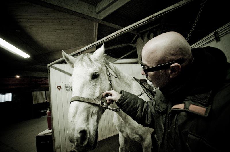 Horse Sutton 018-k